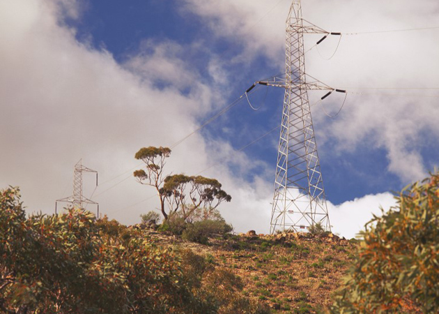 Powerlines-in-Scrub