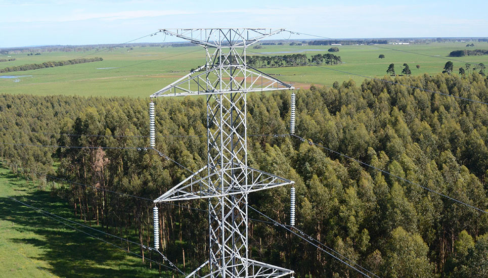 Transmission line alongside forest